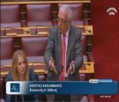 Δραστηριότητα Νικήτα Κακλαμάνη στη Βουλή