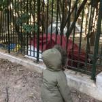 Εικόνα εγκατάλειψης στο Λόφο του Στρέφη